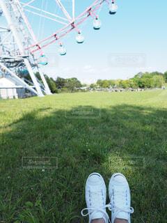 芝生で覆われた畑の上に立っている人の写真・画像素材[4582383]