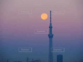 市の塔の写真・画像素材[4834851]