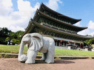 済州島 薬泉寺の写真・画像素材[2034032]