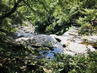 済州島 天帝淵瀑布の写真・画像素材[2034180]