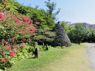 済州民俗村博物館 園内の写真・画像素材[2036429]