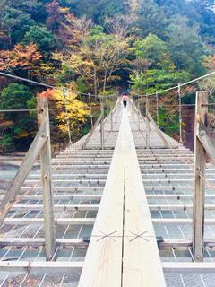 背景の山の橋の写真・画像素材[1626554]