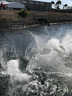 イルカが水面に潜った瞬間の水の様子の写真・画像素材[2108771]
