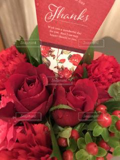 赤,水滴,お花,プレゼント,ハート,カーネーション,母の日,ありがとう,しずく