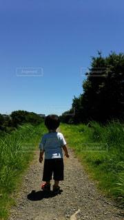 風景,空,屋外,青空,後ろ姿,散歩,子供,人物,人,幼児,遊び,少年,男の子