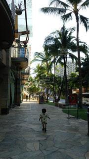 夏,旅行,ハワイ,男の子,アロハ,お出かけ,アロハシャツ
