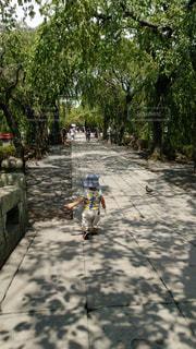 晴れた日にお散歩の写真・画像素材[2262068]