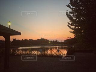 空,公園,夜,池,レトロ,月,黄昏,フィルム,カラー,フィルム写真,宵闇,フィルムフォト