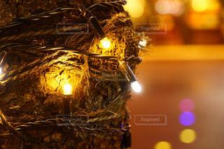 クローズ アップの光のの写真・画像素材[1081503]