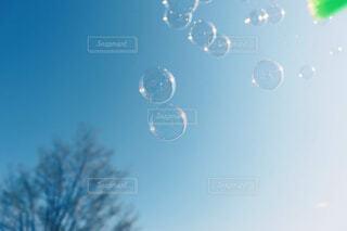 空としゃぼん玉の写真・画像素材[4497931]