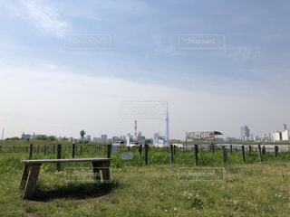 風景,空,屋外,緑,青空,晴天,ベンチ,草