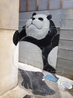 ここから撮るからパンダですの写真・画像素材[2242561]