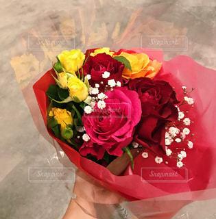 花の写真・画像素材[1978461]