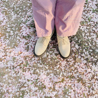 青と白の靴の写真・画像素材[3110180]