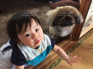 犬,ペキニーズ,屋内,かわいい,女の子,床,いぬ,人物,人,赤ちゃん,孫,お孫ちゃん
