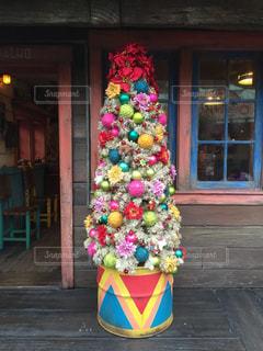 冬,カラフル,綺麗,クリスマス,可愛い,ツリー,パステル,ディズニーシー,野外,木目,ディズニー,クリスマスツリー,パステルカラー