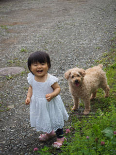 子ども,犬,夏,動物,芝生,子供,女の子,人物,わんこ,道,人,笑顔,こども,幼児,プードル,1歳,成長,わんちゃん,子育て,ツーショット