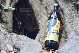岩の上に座ってワインをボトルでの写真・画像素材[1444401]