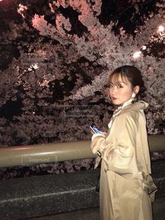 春,桜,夜,花見,夜桜,お花見,スカーフ,ベージュ,ミルクティー色