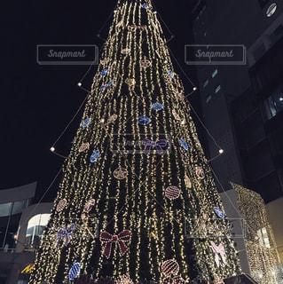 冬,イルミネーション,クリスマス,ツリー,クリスマスマーケット