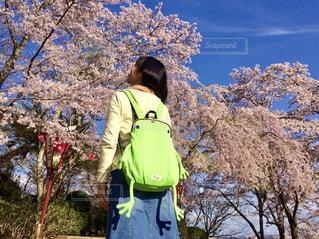 女性,空,桜,屋外,晴れ,青空,後ろ姿,樹木,人物,背中,人,後姿,カエル,蛙,リュック,草木,バッグ,かえる