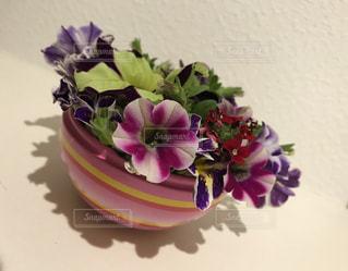 花の写真・画像素材[2017655]