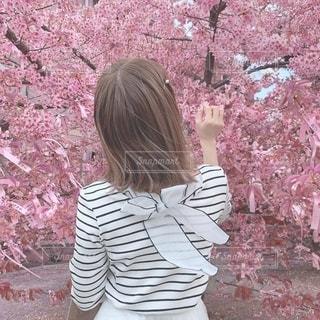河津桜と私と。の写真・画像素材[1916541]