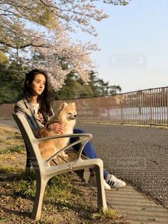犬,ポメラニアン,花見,ラブ,わんちゃん,私と犬,moment