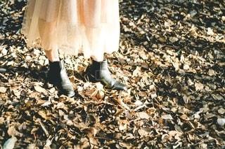 ファッションの写真・画像素材[2700196]
