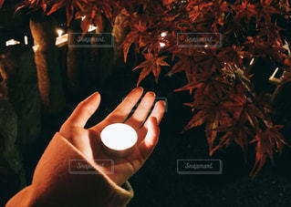 ろうそくを持つ手と紅葉の写真・画像素材[2798404]