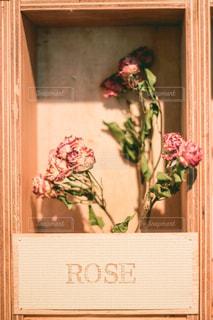 薔薇のドライフラワーの写真・画像素材[2809382]
