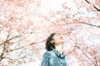 桜と女性の写真・画像素材[3033488]