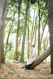 森の中の男性の写真・画像素材[3139900]