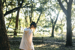森林と女の子の写真・画像素材[3139903]