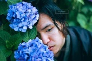 紫陽花と着物の男性の写真・画像素材[3377281]