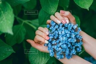 花を持つ手の写真・画像素材[3402491]