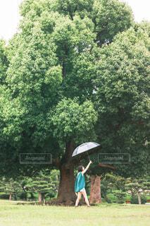 傘を持っている女性の写真・画像素材[3669626]