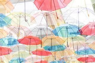 カラフルな傘の写真・画像素材[3669622]