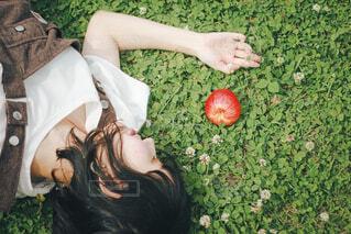 りんごと女の子の写真・画像素材[4448898]