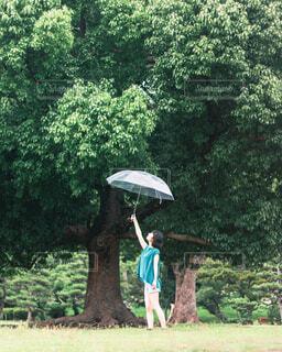 傘を持つ女性の写真・画像素材[4464095]