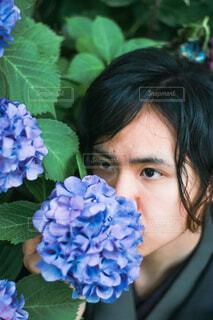 紫陽花と男性の写真・画像素材[4464088]