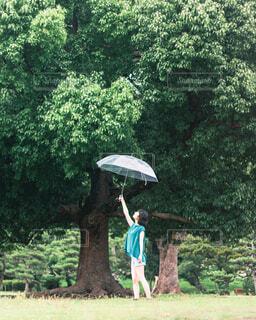 傘をさす女の子の写真・画像素材[4561253]