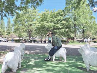 羊とわたしの写真・画像素材[2121993]