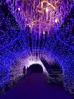 青い煌めきのトンネルの写真・画像素材[1937004]