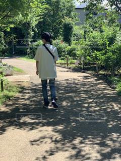 屋外,晴れ,散歩,樹木,庭園,人物,人,休日,のんびり,草木,ガーデン,美しい風景,京成バラ園