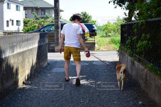 男性,家族,犬,動物,散歩,ペット,いぬ,人物,人,柴犬,男の子,お散歩,わんちゃん,おさんぽ,ワンチャン,男の人