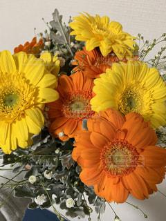 近くに黄色い花のアップの写真・画像素材[1939086]