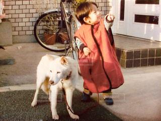 犬,動物,自転車,赤,フィルム,少年,懐かしい,幼少期,フィルム写真,フィルムフォト
