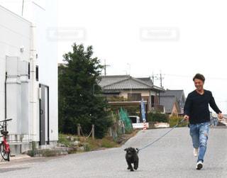 愛犬と散歩の写真・画像素材[2711072]