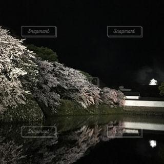 彦根城ライトアップ,滋賀県彦根城
